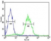 CD34 antibody flow cytometric analysis of Jurkat cells (right histogram) compared to a negative control cell (left histogram). FITC-conjugated goat-anti-rabbit secondary Ab was used for the analysis.