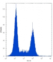 TLR9 antibody flow cytometric analysis of Ramos cells (right histogram) compared to a negative control (left histogram). FITC-conjugated donkey-anti-rabbit secondary Ab was used for the analysis.
