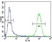 ATF3 antibody flow cytometric analysis of CEM cells (right histogram) compared to a negative control (left histogram). FITC-conjugated goat-anti-rabbit secondary Ab was used for the analysis.