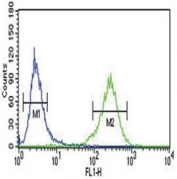 AHR antibody flow cytometric analysis of NCI-H460 cells (green) compared to a <a href=