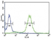 Anti-PCSK9 antibody flow cytometric analysis of HeLa cells (right histogram) compared to a negative control (left histogram). FITC-conjugated goat-anti-rabbit secondary Ab was used for the analysis.