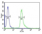 ABHD12 antibody flow cytometric analysis of human A549 cells (right histogram) compared to a <a href=../search_result.php?search_txt=n1001>negative control</a> (left histogram). FITC-conjugated goat-anti-rabbit secondary Ab was used for the analysis.