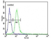 Flow cytometry testing of human HEK293 cells with AIF antibody; Blue=isotype control, Green= AIF antibody.
