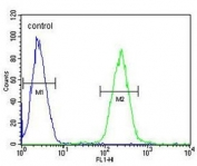 Flow cytometry testing of human CCRF-CEM cells with AMSH-like protease antibody; Blue=isotype control, Green= AMSH-like protease antibody.