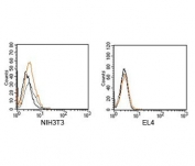 Rabbit IgG isotype control antibody FACS mouse samples