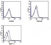 Rabbit IgG isotype control antibody APC conjugate FACS human samples