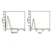 Rabbit IgG isotype control antibody PE conjugate FACS mouse samples