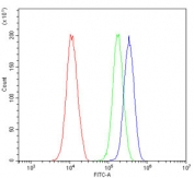 Flow cytometry testing of human 293T cells with HSF2 antibody at 1ug/million cells (blocked with goat sera); Red=cells alone, Green=isotype control, Blue= HSF2 antibody.