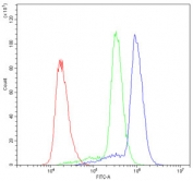 Flow cytometry testing of human U937 cells with ASIC3 antibody at 1ug/10^6 cells (blocked with goat sera); Red=cells alone, Green=isotype control, Blue= ASIC3 antibody.