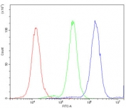 Flow cytometry testing of human A549 cells with ATXN3 antibody at 1ug/million cells (blocked with goat sera); Red=cells alone, Green=isotype control, Blue= ATXN3 antibody.