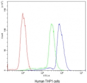 Flow cytometry testing of human THP1 cells with AIRE antibody at 1ug/10^6 cells (blocked with goat sera); Red=cells alone, Green=isotype control, Blue= AIRE antibody.