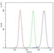 Flow cytometry testing of human HeLa cells with AES antibody at 1ug/million cells (blocked with goat sera); Red=cells alone, Green=isotype control, Blue= AES antibody.