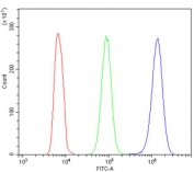 Flow cytometry testing of human HL-60 cells with ATP5MC1/2/3 antibody at 1ug/million cells (blocked with goat sera); Red=cells alone, Green=isotype control, Blue= ATP5MC1/2/3 antibody.