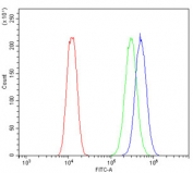 Flow cytometry testing of human U-2 OS cells with B7H4 antibody at 1ug/million cells (blocked with goat sera); Red=cells alone, Green=isotype control, Blue= B7H4 antibody.