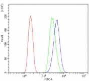 Flow cytometry testing of human PC-3 cells with YWHAZ antibody at 1ug/million cells (blocked with goat sera); Red=cells alone, Green=isotype control, Blue= YWHAZ antibody.