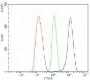 Flow cytometry testing of human HepG2 cells with ALDH1L1 antibody at 1ug/million cells (blocked with goat sera); Red=cells alone, Green=isotype control, Blue= ALDH1L1 antibody.