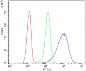 Flow cytometry testing of human HeLa cells with ANGPT2 antibody at 1ug/million cells (blocked with goat sera); Red=cells alone, Green=isotype control, Blue= ANGPT2 antibody.