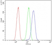 Flow cytometry testing of human HeLa cells with AXL antibody at 1ug/million cells (blocked with goat sera); Red=cells alone, Green=isotype control, Blue= AXL antibody.