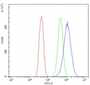 Flow cytometry testing of human Caco-2 cells with Glycine decarboxylase antibody at 1ug/million cells (blocked with goat sera); Red=cells alone, Green=isotype control, Blue= Glycine decarboxylase antibody.