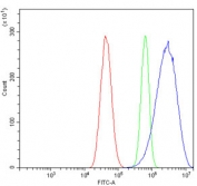 Flow cytometry testing of human U-87 MG cells with GNG2 antibody at 1ug/million cells (blocked with goat sera); Red=cells alone, Green=isotype control, Blue= GNG2 antibody.