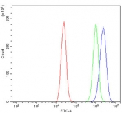 Flow cytometry testing of human Caco-2 cells with IGF2-AS antibody at 1ug/million cells (blocked with goat sera); Red=cells alone, Green=isotype control, Blue= IGF2-AS antibody.