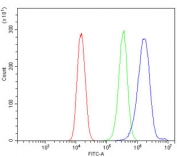 Flow cytometry testing of human 293T cells with NDUFB2 antibody at 1ug/million cells (blocked with goat sera); Red=cells alone, Green=isotype control, Blue= NDUFB2 antibody.