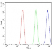 Flow cytometry testing of mouse HEPA1-6 cells with Par4 antibody at 1ug/million cells (blocked with goat sera); Red=cells alone, Green=isotype control, Blue= Par4 antibody.