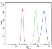 Flow cytometry testing of human SiHa cells with Argininosuccinate Synthetase 1 antibody at 1ug/million cells (blocked with goat sera); Red=cells alone, Green=isotype control, Blue= Argininosuccinate Synthetase 1 antibody.