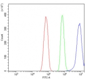 Flow cytometry testing of rat RH35 cells with APOA5 antibody at 1ug/million cells (blocked with goat sera); Red=cells alone, Green=isotype control, Blue= APOA5 antibody.