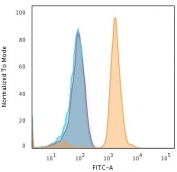 Flow cytometry testing of fixed human Jurkat cells with Bax antibody (clone 2D2); Gold=isotype control, Blue= Bax antibody.