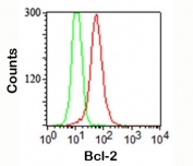 FACS staining (intracellular) of Jurkat cells using Bcl-2 antibody (red) and isotype control (green).