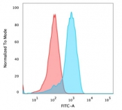 Flow cytometry testing of PFA-fixed human MCF-7 cells with CD47 antibody (clone B6H12.2); Red=isotype control, Blue= CD47 antibody.