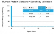 Analysis of HuProt(TM) microarray containing more than 19,000 full-length human proteins using EGFR antibody (clone GFR450). These results demonstrate the foremost specificity of the GFR450 mAb. Z- and S- score: The Z-score represents the strength of a signal that an antibody (in combination with a fluorescently-tagged anti-IgG secondary Ab) produces when binding to a particular protein on the HuProt(TM) array. Z-scores are described in units of standard deviations (SD's) above the mean value of all signals generated on that array. If the targets on the HuProt(TM) are arranged in descending order of the Z-score, the S-score is the difference (also in units of SD's) between the Z-scores. The S-score therefore represents the relative target specificity of an Ab to its intended target.