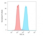 Flow cytometry testing of PFA-fixed human MCF7 cells with EpCAM antibody (clone 323/A3); Red=isotype control, Blue= EpCAM antibody.