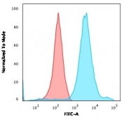 Flow cytometry testing of permeabilized human HEK293 cells with Neurofilament antibody (clone NF421); Red=isotype control, Blue= Neurofilament antibody.