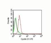 Cyclin D1 antibody FACS HeLa