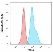 Flow cytometry testing of human Raji cells with anti-HLA-DRB1 antibody (clone SPM423); Red=isotype control, Blue= anti-HLA-DRB1 antibody.