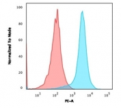 Flow cytometry testing of human Jurkat cells with PE-conjugated CD31 antibody (blue, clone JC/70A) and isotype control (red).