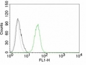 Flow cytometry test of Jurkat cells. Black: cells alone; Grey: isotype control; Green: AF488-labeled CD31 antibody (C31.10).
