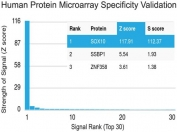 Protein array validation of the SOX-10 antibody: Analysis of HuProt(TM) microarray containing more than 19,000 full-length human proteins using SOX-10 antibody (clone SOX10/1074). Z- and S- score: The Z-score represents the strength of a signal that an antibody (in combination with a fluorescently-tagged anti-IgG secondary Ab) produces when binding to a particular protein on the HuProt(TM) array. Z-scores are described in units of standard deviations (SD's) above the mean value of all signals generated on that array. If the targets on the HuProt(TM) are arranged in descending order of the Z-score, the S-score is the difference (also in units of SD's) between the Z-scores. The S-score therefore represents the relative target specificity of an Ab to its intended target.