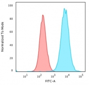 Analysis of HuProt(TM) microarray containing more than 19,000 full-length human proteins using recombinant Beta-2 Microglobulin antibody (clone rB2M/961). These results demonstrate the foremost specificity of the rB2M/961 mAb. <BR>Z- and S- score: The Z-score represents the strength of a signal that an antibody (in combination with a fluorescently-tagged anti-IgG secondary Ab) produces when binding to a particular protein on the HuProt(TM) array. Z-scores are described in units of standard deviations (SD's) above the mean value of all signals generated on that array. If the targets on the HuProt(TM) are arranged in descending order of the Z-score, the S-score is the difference (also in units of SD's) between the Z-scores. The S-score therefore represents the relative target specificity of an Ab to its intended target.