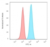 Flow cytometry testing of fixed human T98G cells with recombinant GFAP antibody (clone ASTRO/1974R); Red=isotype control, Blue= recombinant GFAP antibody.