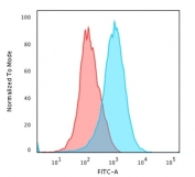 Flow cytometry testing of PFA-fixed human Jurkat cells with recombinant CD31 antibody (clone C31/1395R); Red=isotype control, Blue= recombinant CD31 antibody.