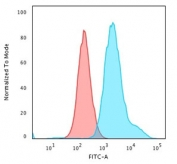Flow cytometry testing of PFA-fixed human HeLa cells with recombinant Cytokeratin 7 antibody (clone KRT7/1499R); Red=isotype control, Blue= recombinant Cytokeratin 7 antibody.