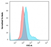 Flow testing of fixed and permeabilized human HeLa cells with Annexin A1 antibody (clone ANXA1/1671). Red=isotype control, Blue= Annexin A1 antibody.