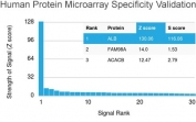 Analysis of HuProt(TM) microarray containing more than 19,000 full-length human proteins using human Albumin antibody (clone ALB/2142). These results demonstrate the foremost specificity of the ALB/2142 mAb. Z- and S- score: The Z-score represents the strength of a signal that an antibody (in combination with a fluorescently-tagged anti-IgG secondary Ab) produces when binding to a particular protein on the HuProt(TM) array. Z-scores are described in units of standard deviations (SD's) above the mean value of all signals generated on that array. If the targets on the HuProt(TM) are arranged in descending order of the Z-score, the S-score is the difference (also in units of SD's) between the Z-scores. The S-score therefore represents the relative target specificity of an Ab to its intended target.