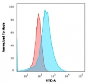 Flow cytometry testing of PFA-fixed human HeLa cells with Annexin A1 antibody (clone ANXA1/3566); Red=isotype control, Blue= Annexin A1 antibody.