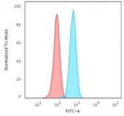 Flow cytometry testing of permeabilized human HeLa cells with Cytokeratin 14 antibody (clone KRT14/2375); Red=isotype control, Blue= Cytokeratin 14 antibody.