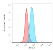 Flow cytometry testing of permeabilized human K562 cells with recombinant c-Myc antibody (clone MYC2895R); Red=isotype control, Blue= recombinant c-Myc antibody.