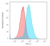 Flow cytometry testing of PFA-fixed human HepG2 cells with recombinant GRP94 antibody (clone HSP90B1/3168R); Red=isotype control, Blue= recombinant GRP94 antibody.